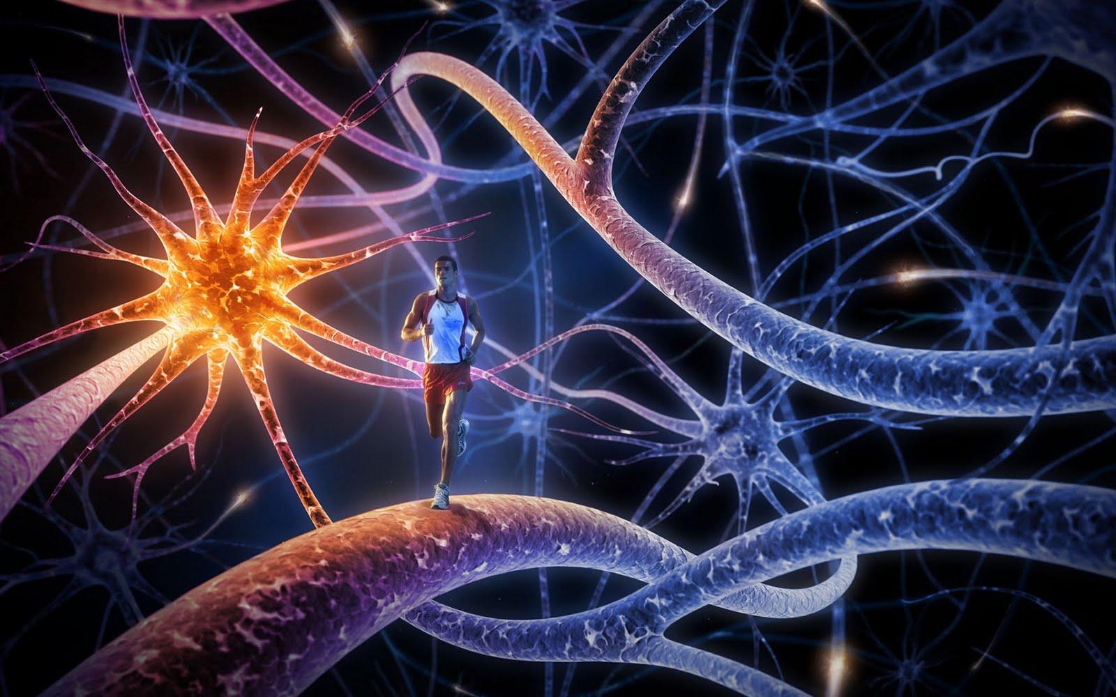 Entrenate con Fitness mental